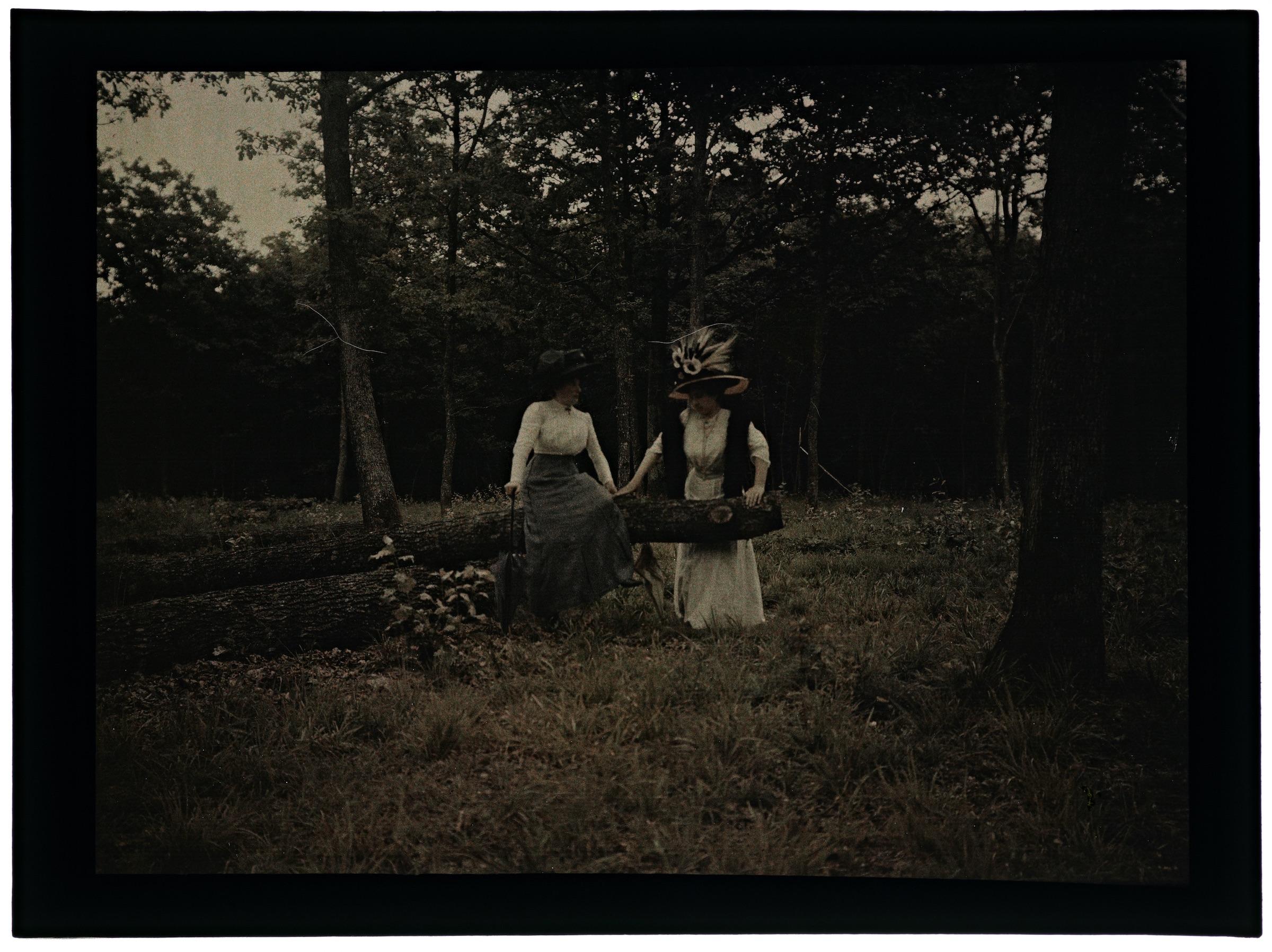 Deux femmes dans la forêt et dans la campagne