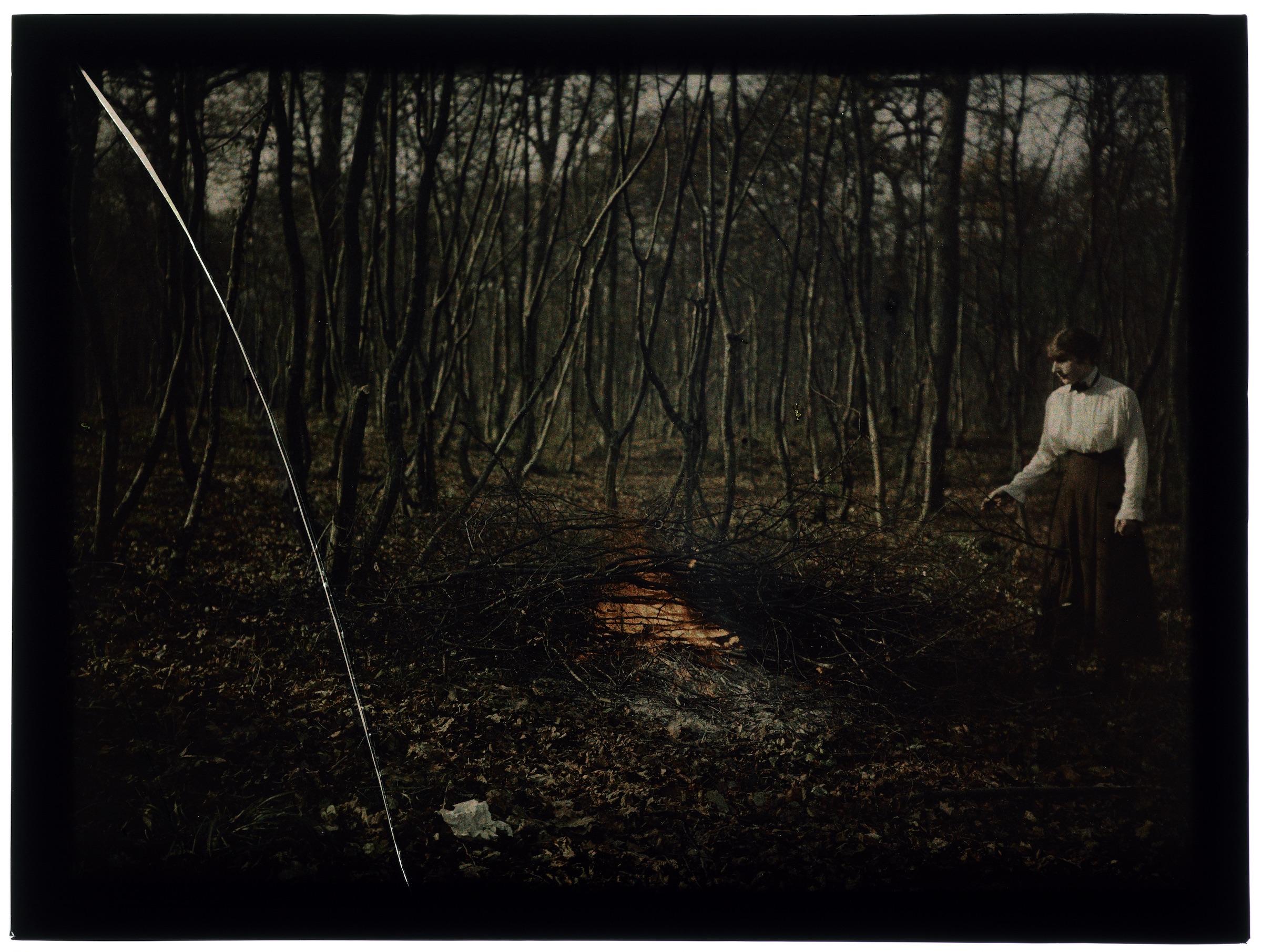 Femme faisant du feu dans la forêt