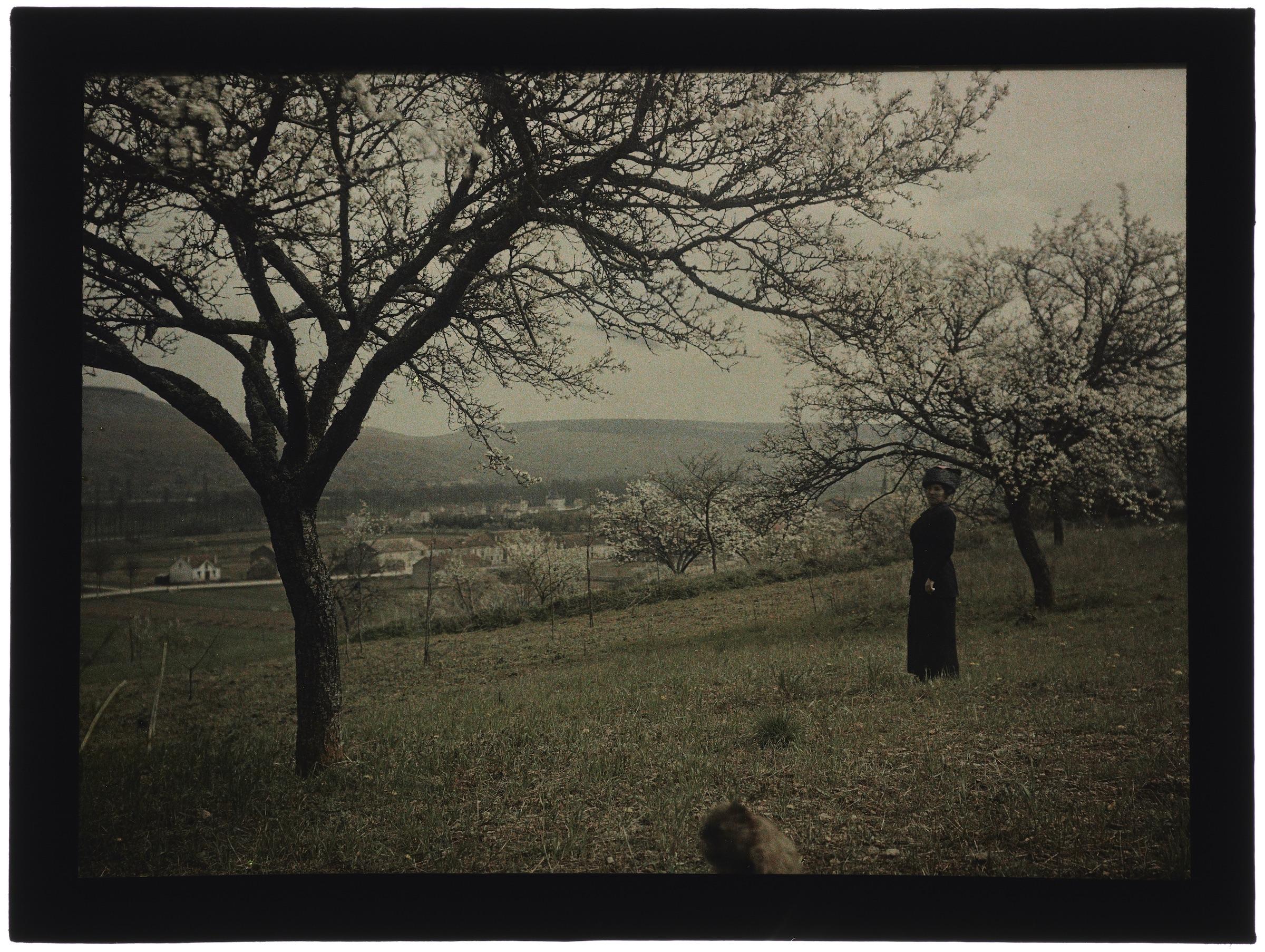 Femme dans la campagne