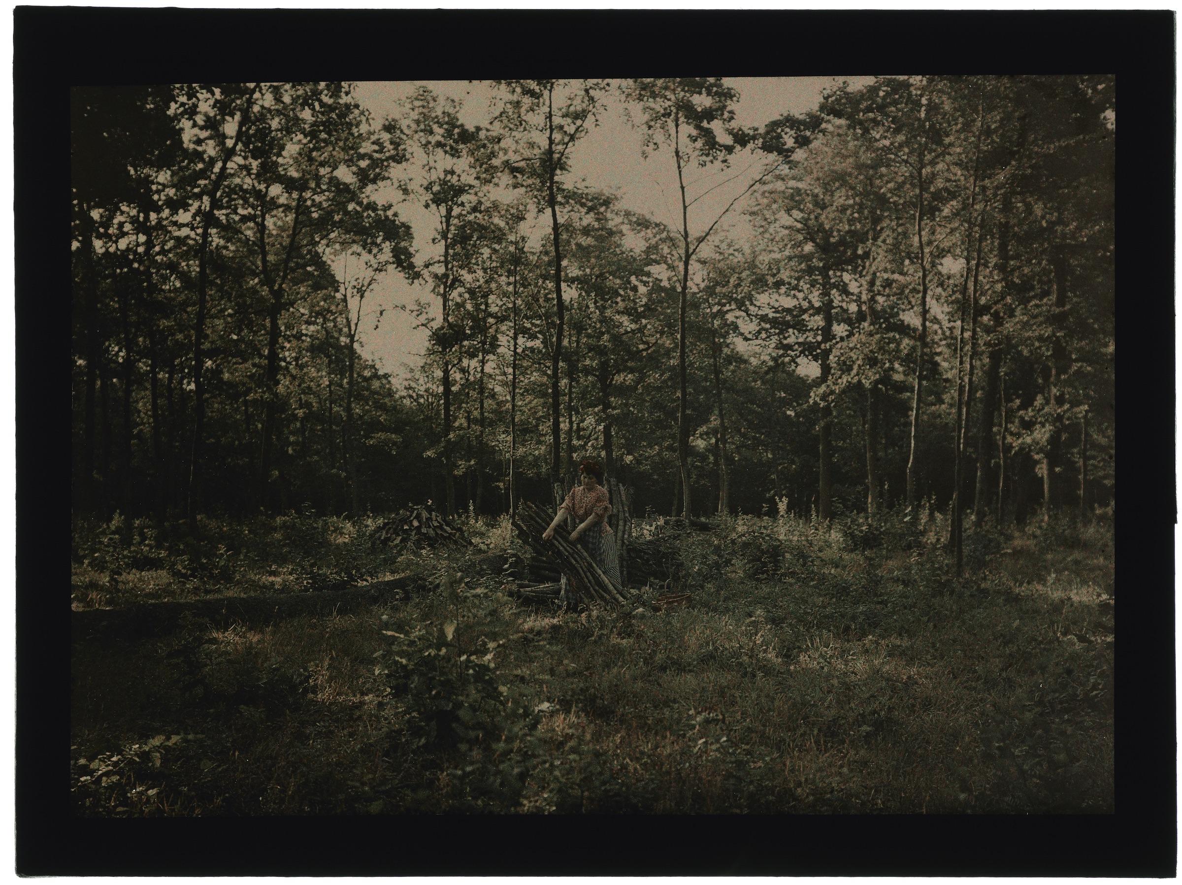 Femme paysanne dans la forêt