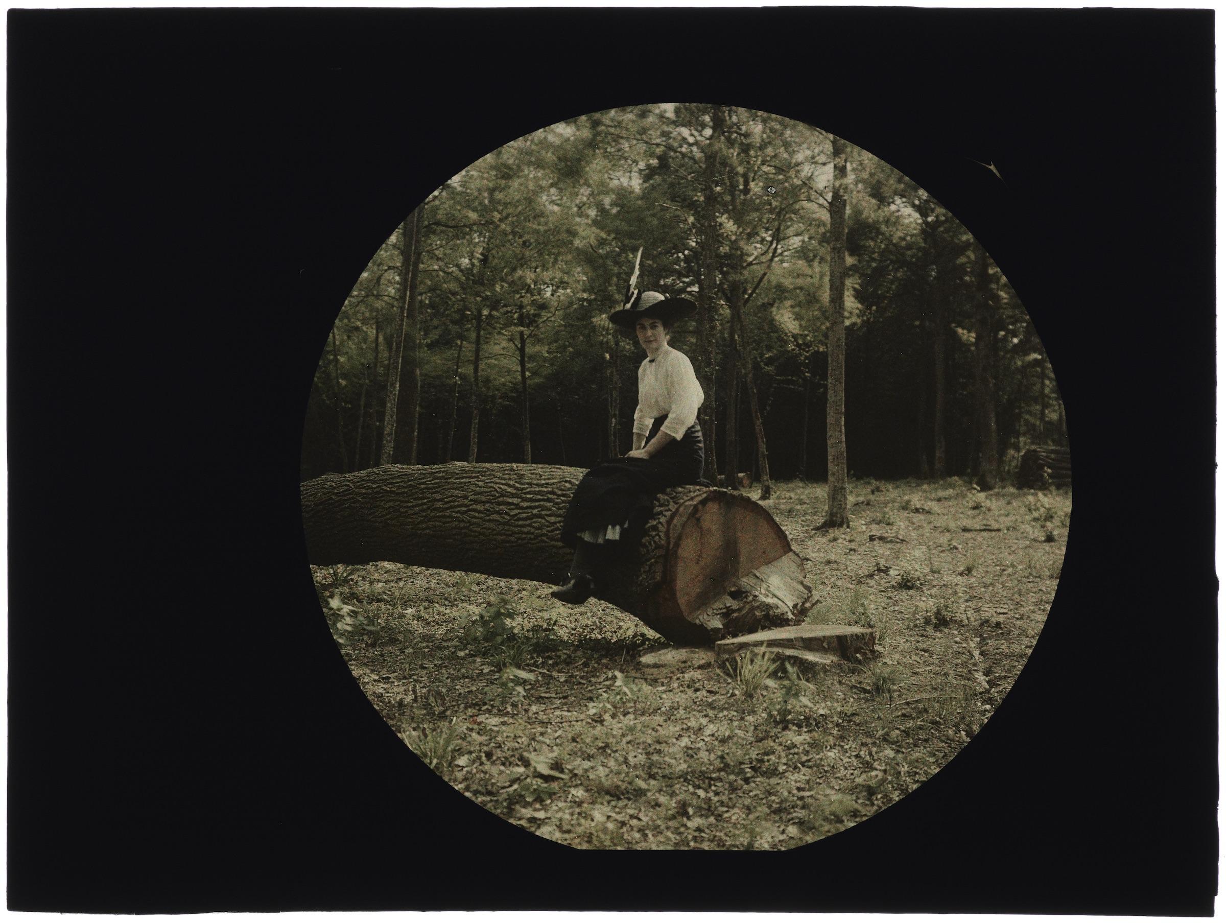 Femme dans la forêt assise sur un tronc