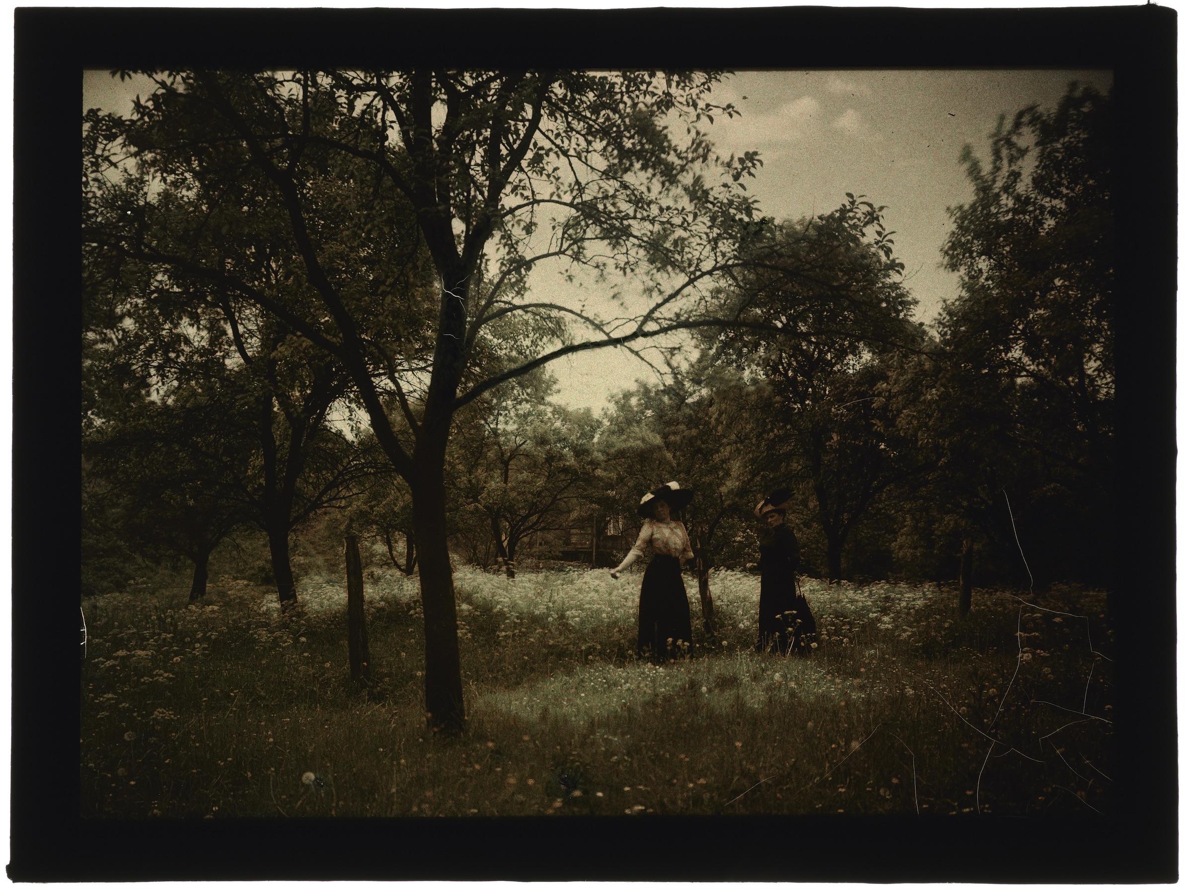 Femmes dans la campagne