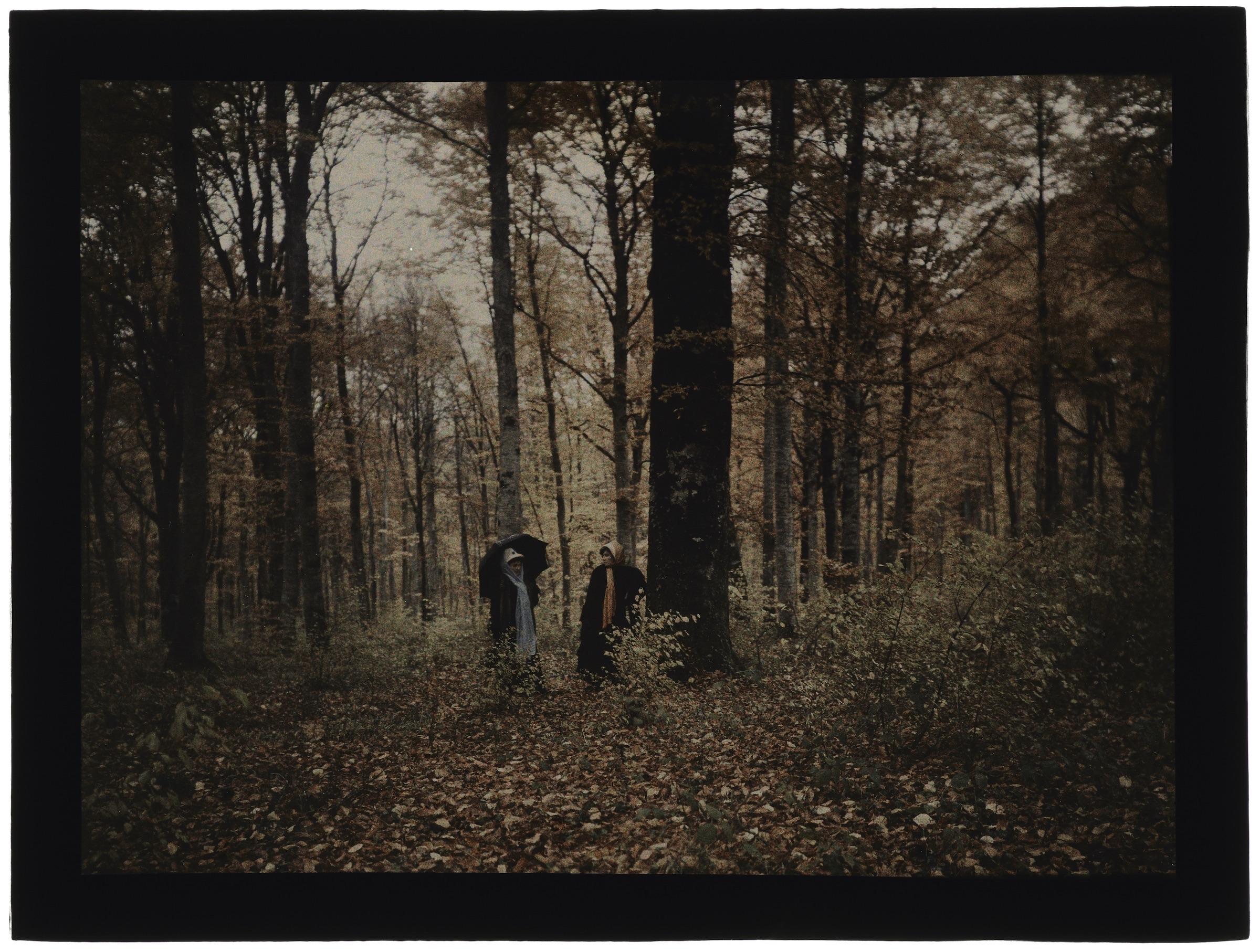Deux femmes en forêt