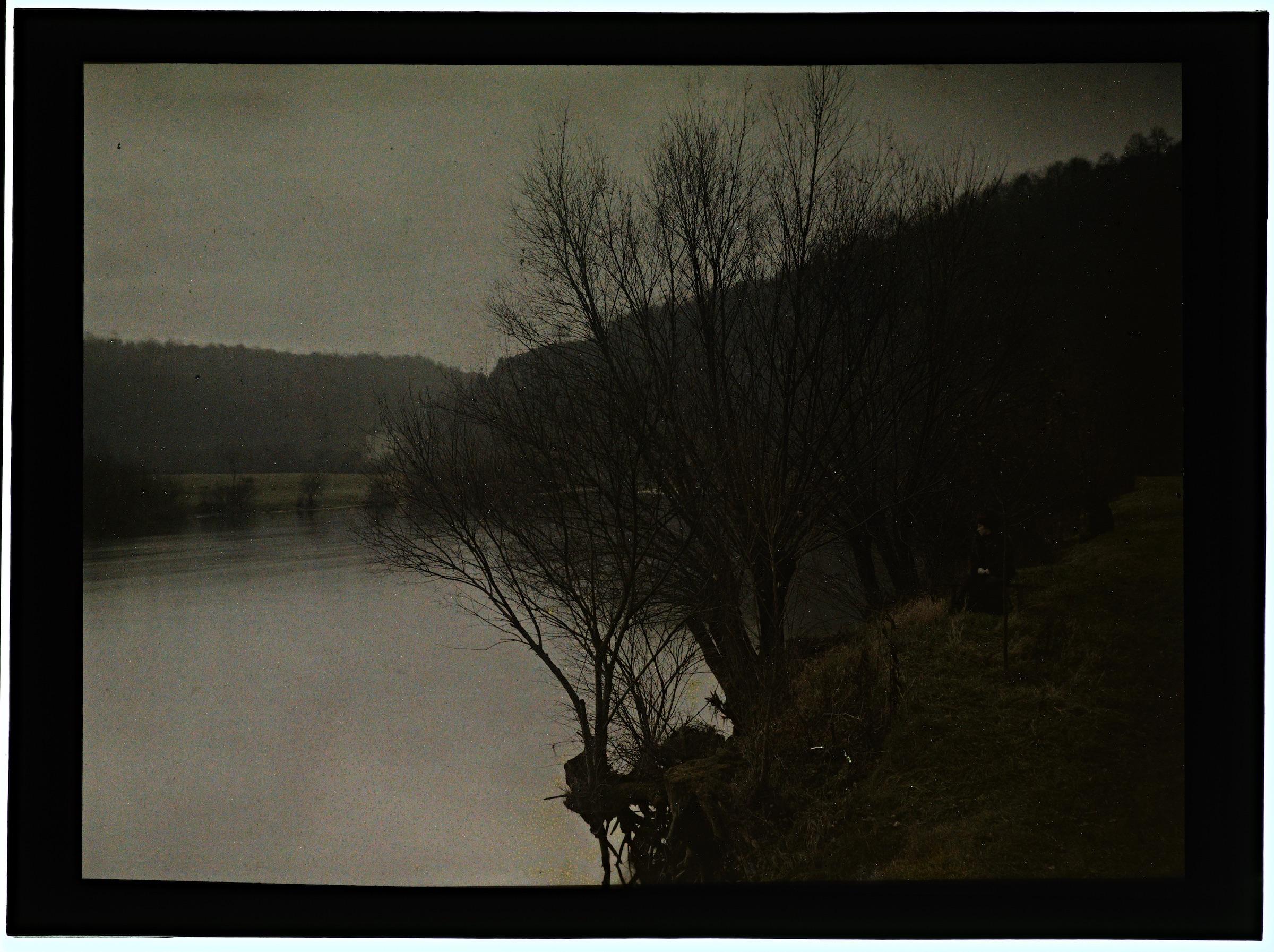 Au bord de la Moselle