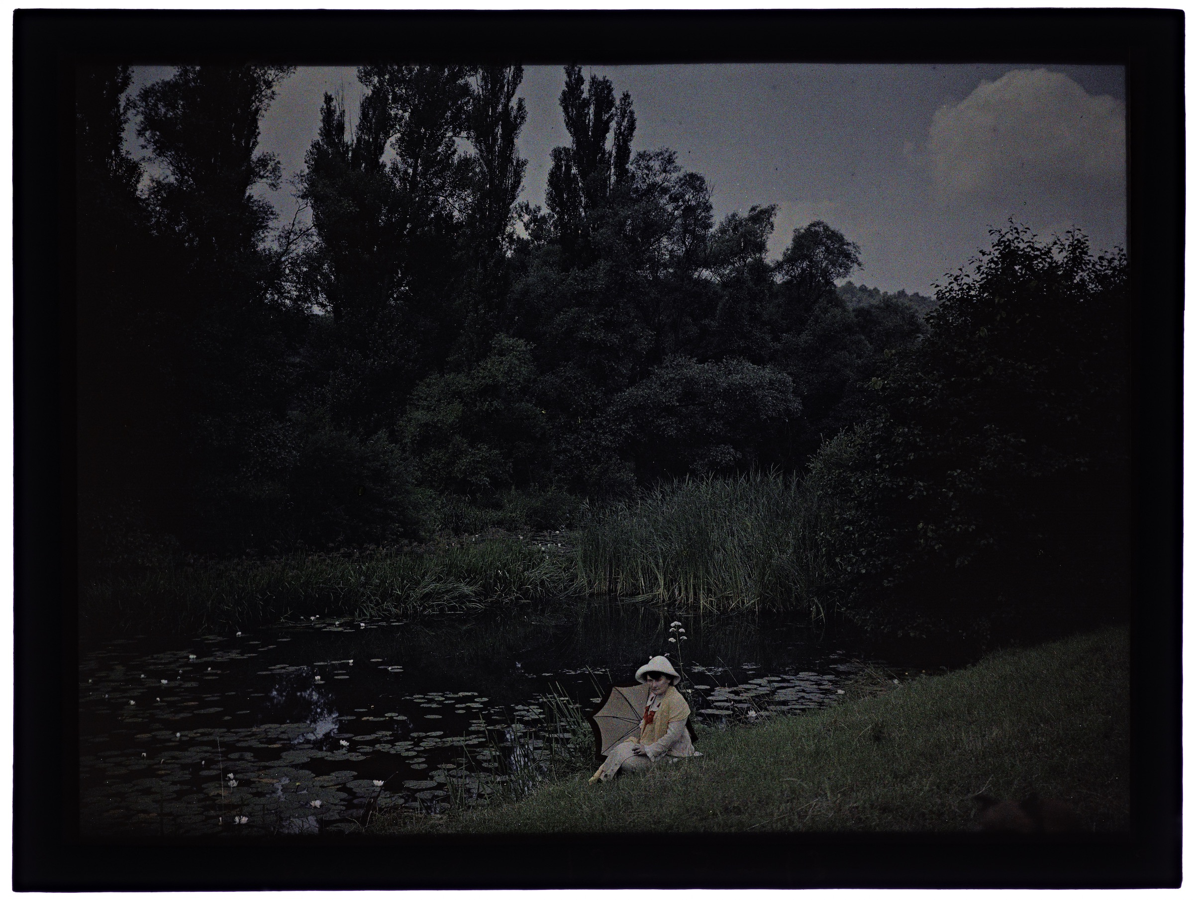 Femme regardant les nénuphars en fleurs
