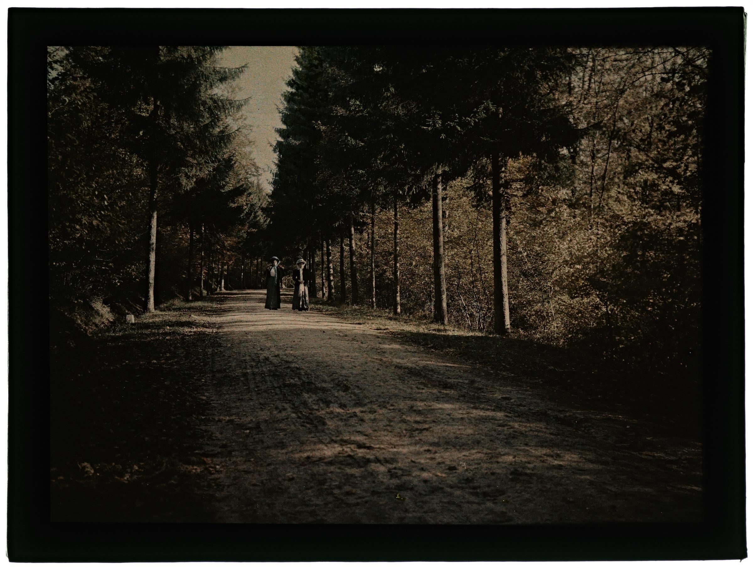 Deux femmes dans la forêt