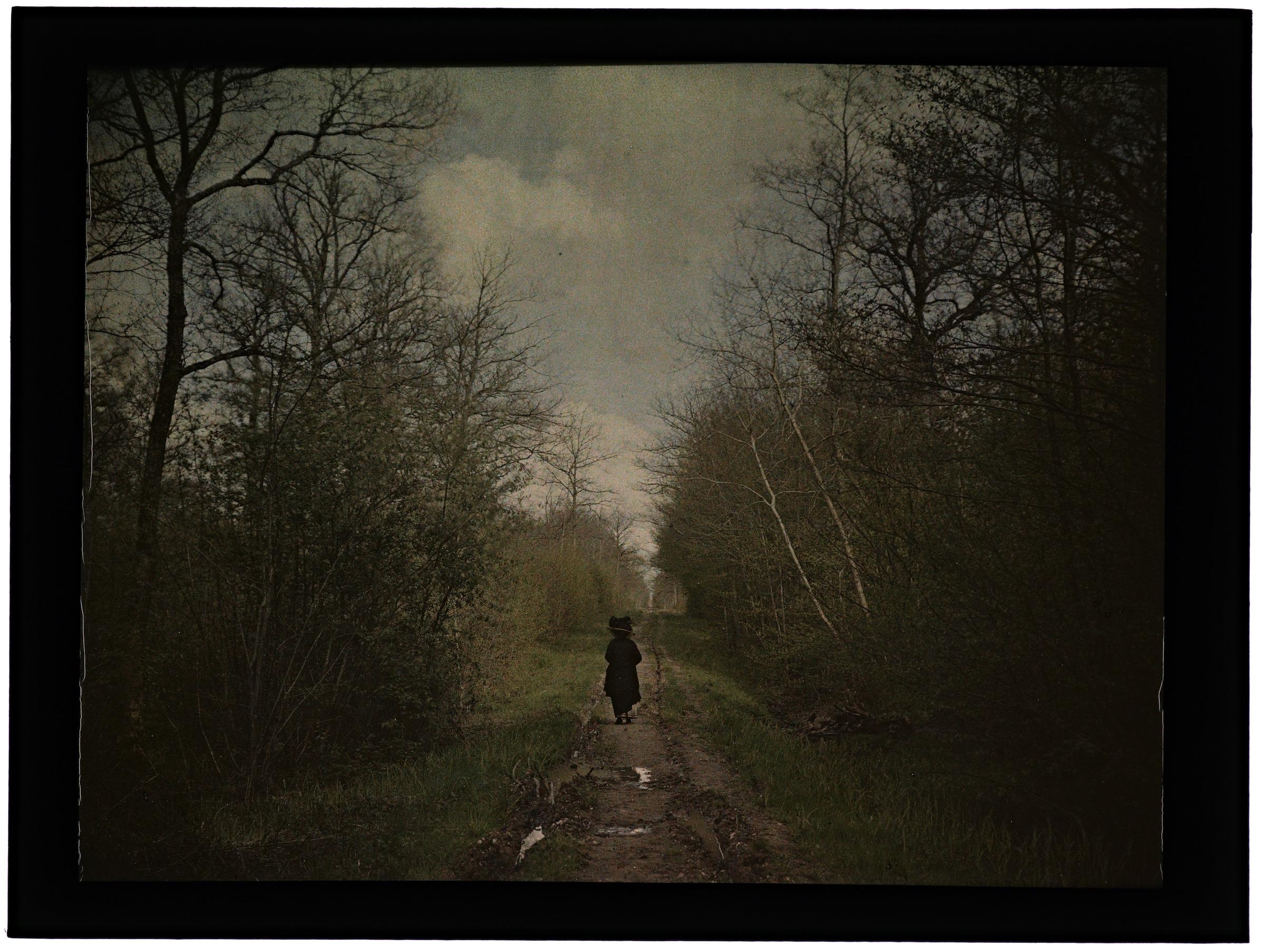 Femme dans la campagne ou la forêt