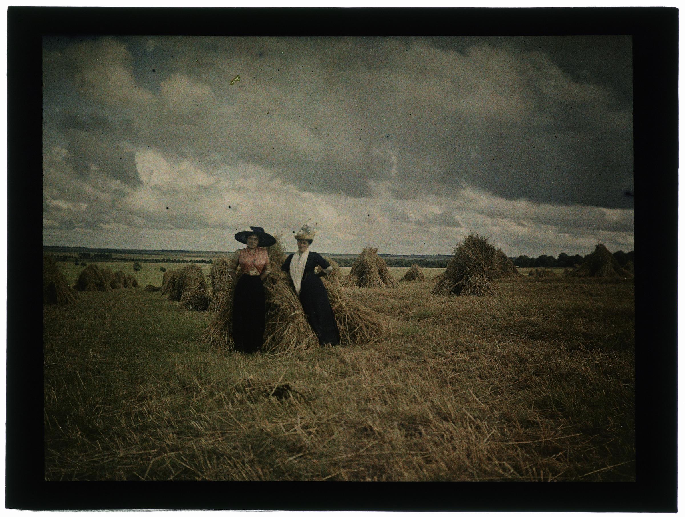 Femme dans les champs de blé moissonné
