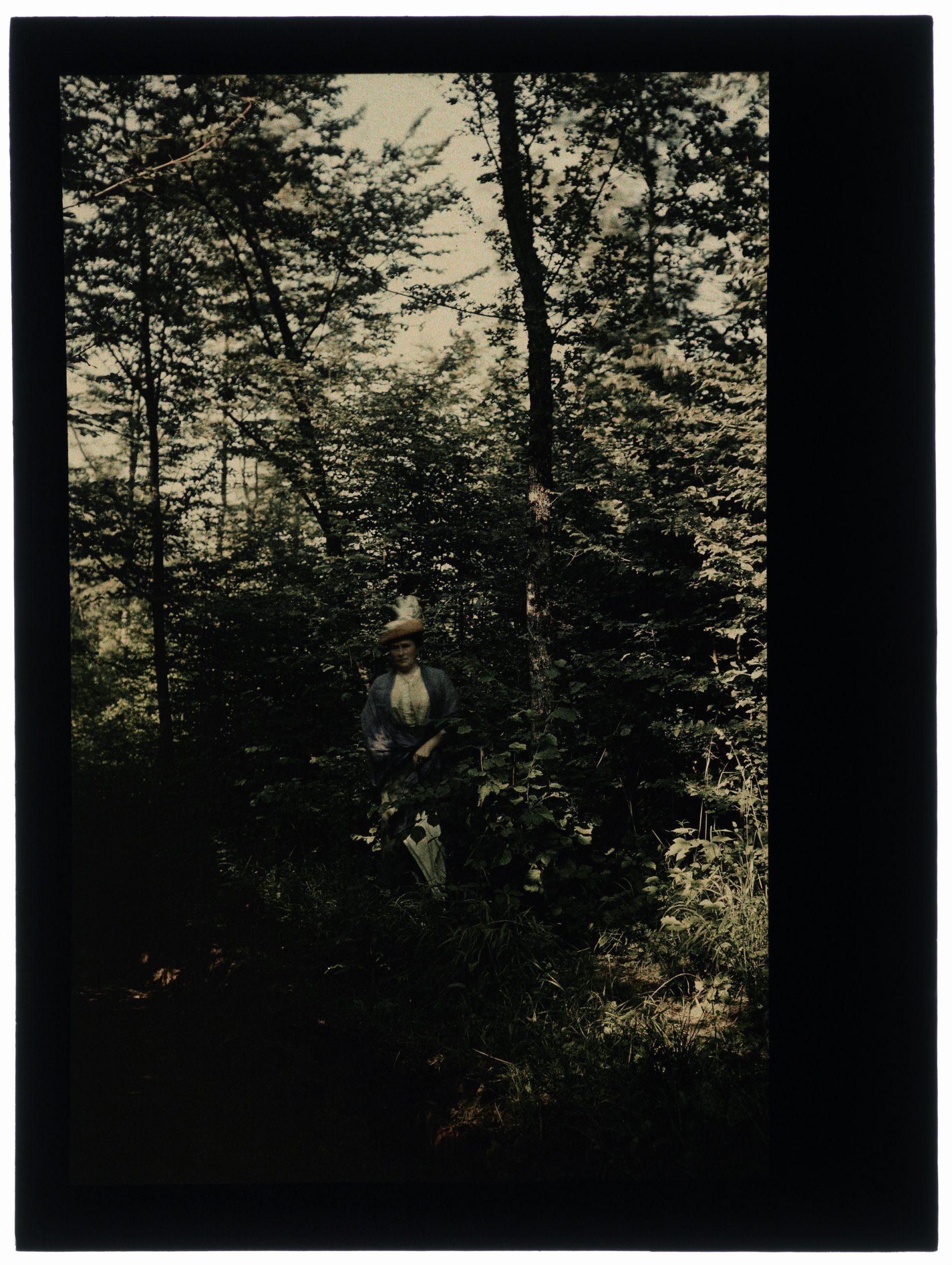 Une ou deux femmes dans la forêt