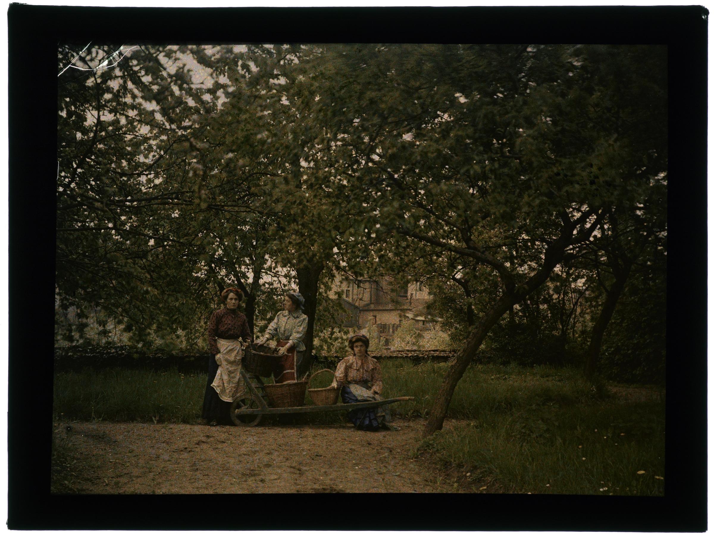 Femme dans le jardin fleuri avec tonnelle