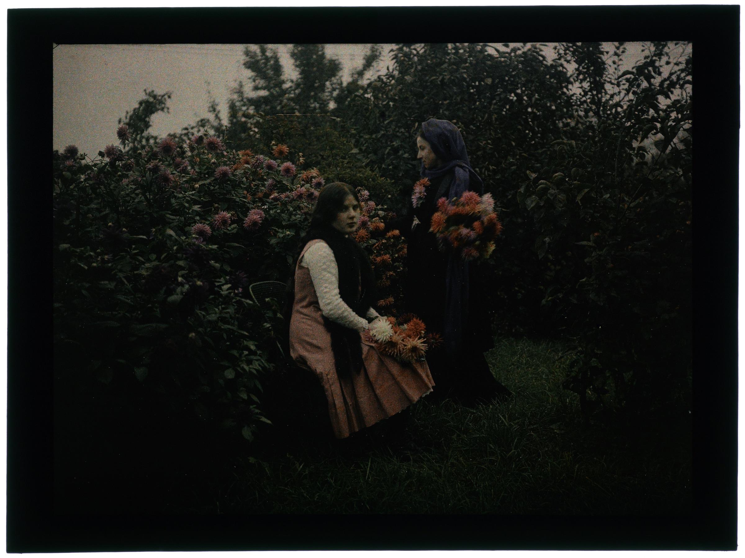 Femme dans le verger avec arbres en fleurs