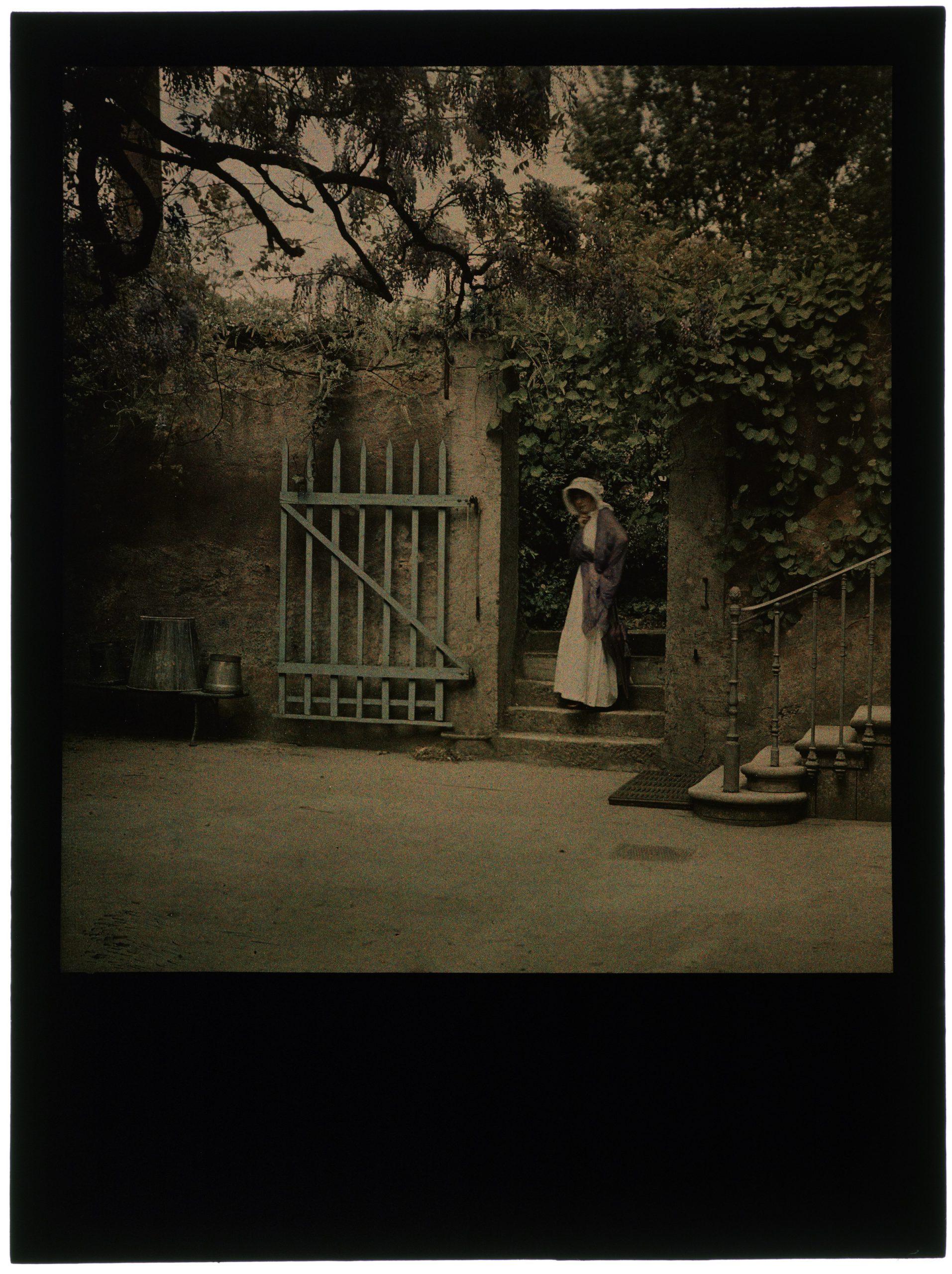 Femme dans la cour à la glycine
