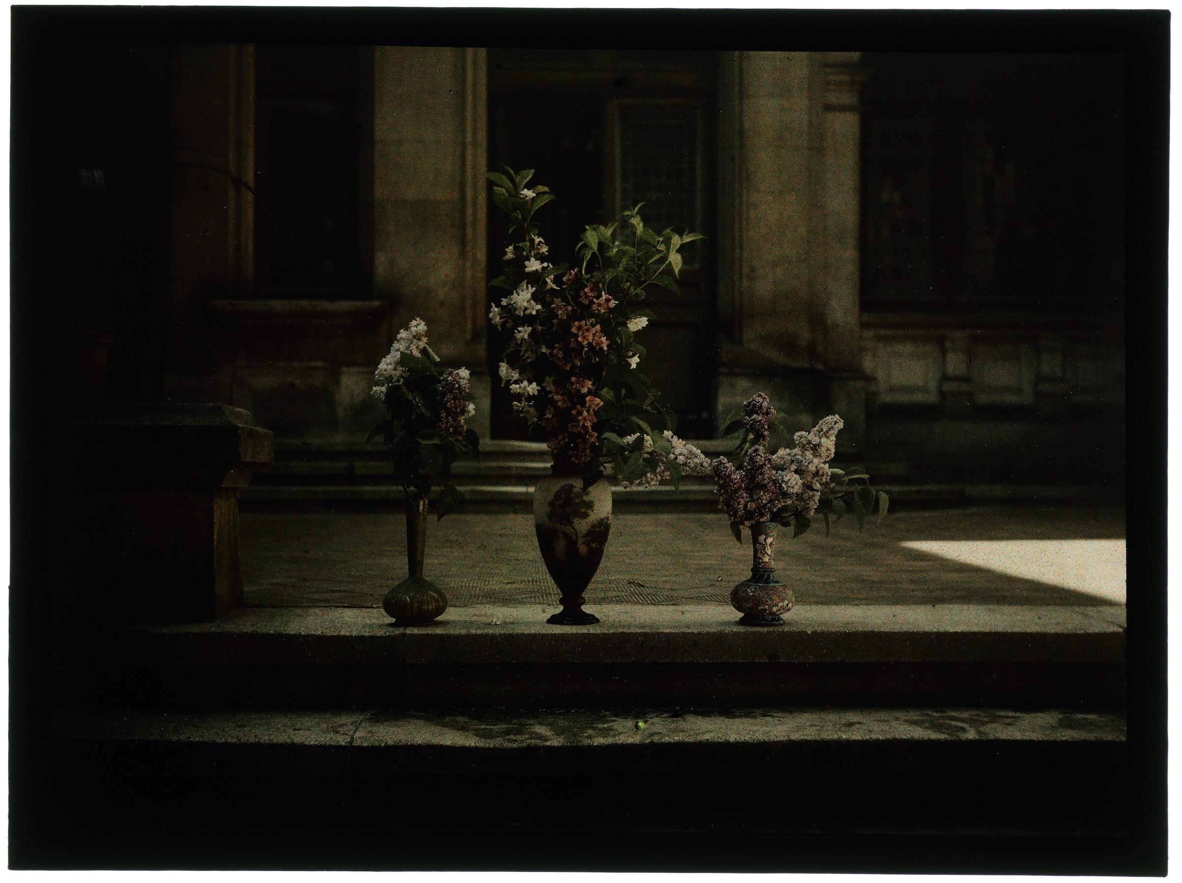 Trois bouquets dans une cour