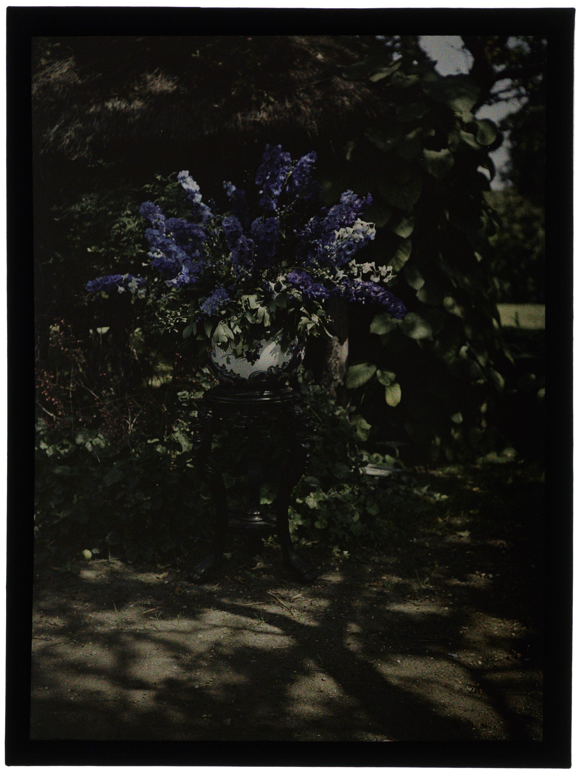 Bouquet de delphinium dans un vase boule, sur une sellette, dans le jardin