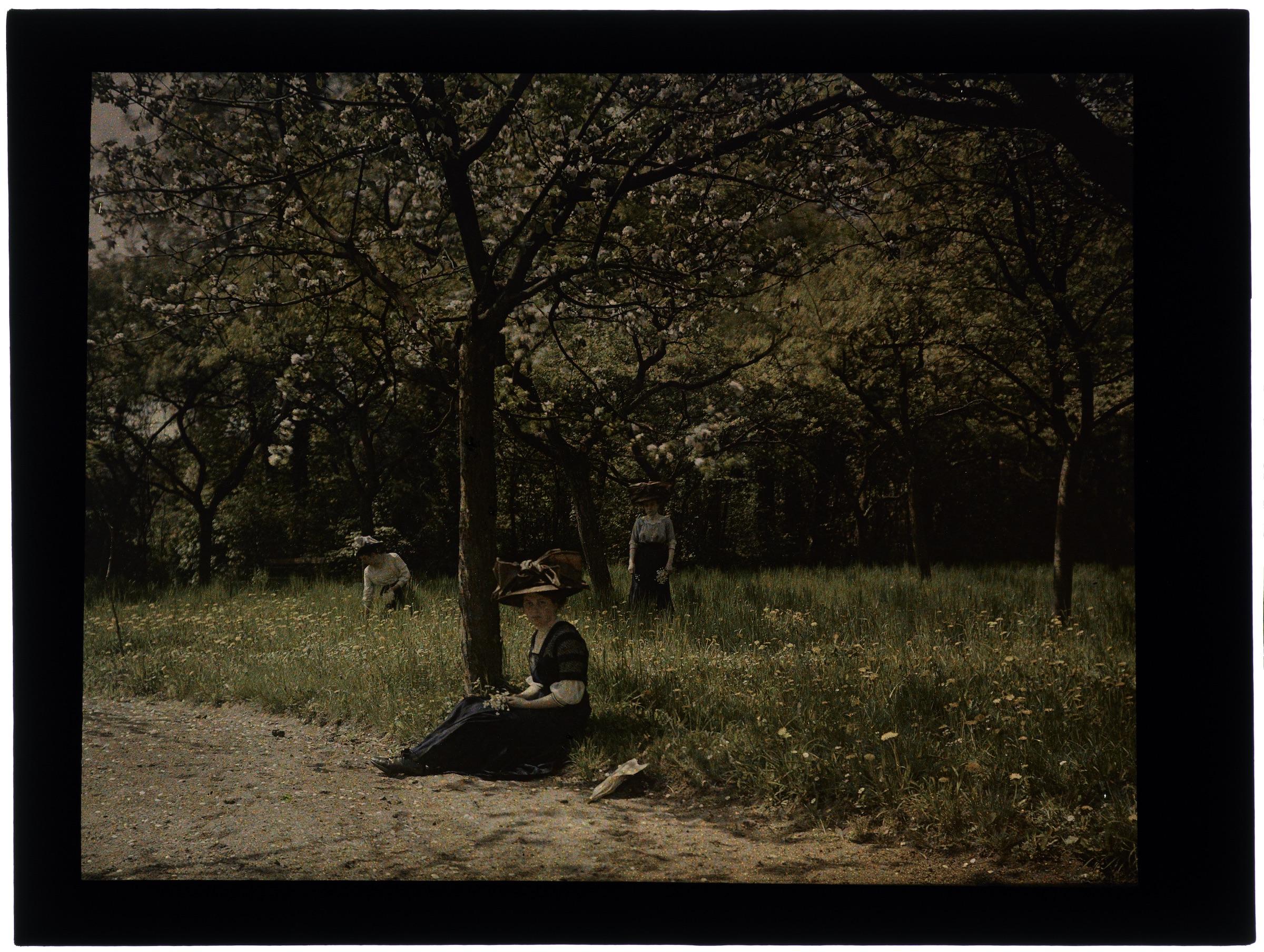 Femme au jardin fleuri